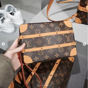 Louis Vuitton Monogram Canvas Small Pouch Bag