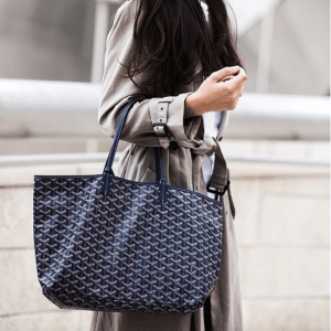Goyard Saint Louis Bag 8
