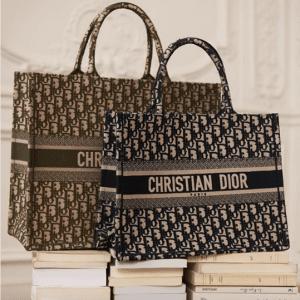 Dior Blue Oblique Canvas Small Book Tote Bag 3