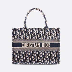 Dior Blue Oblique Canvas Small Book Tote Bag