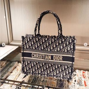 Dior Blue Oblique Canvas Small Book Tote Bag 4