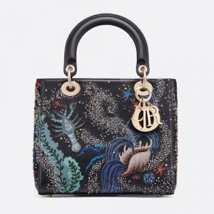 Dior Blue Water Embroidered Medium Lady Dior Bag