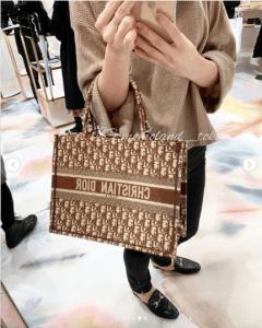 Dior Brown Oblique Canvas Small Book Tote Bag