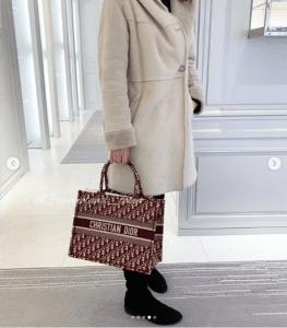 Dior Burgundy Oblique Canvas Small Book Tote Bag 5