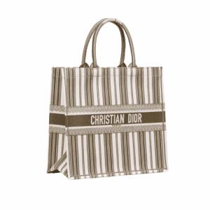 Dior Green Striped Book Tote Bag