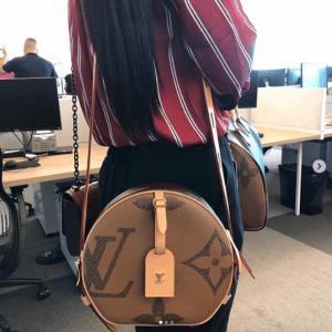 Louis Vuitton Monogram Reverse Geant Boite Chapeau Souple Bag 2