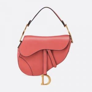 Dior Sienna Calfskin Saddle Bag