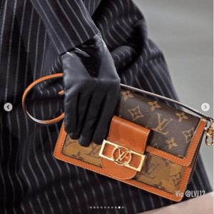 Louis Vuitton Monogram Canvas:Reverse Dauphine Bag