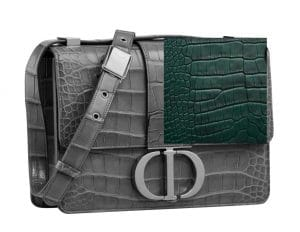Dior Montaigne Bag Exotic