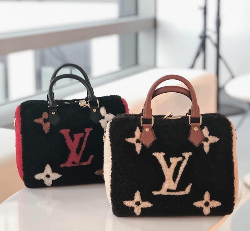 Louis Vuitton Teddy Speedy 25 Bag