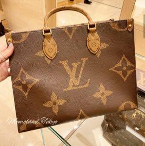 Louis Vuitton OntheGo Small Bag