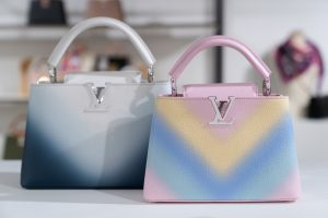 Louis Vuitton Multicolor Ombre Capucines Bags - Cruise 2021
