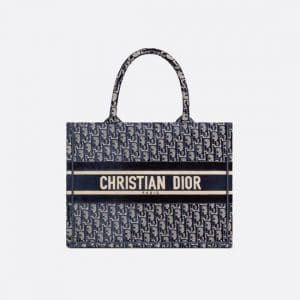 Dior Blue Oblique Embroidered Velvet Small Book Tote Bag