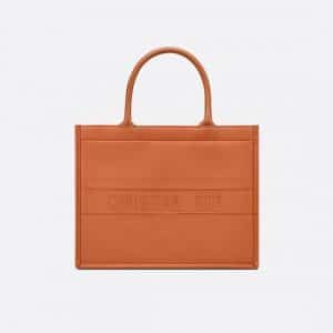 Dior Dark Tan Calfskin Small Book Tote Bag