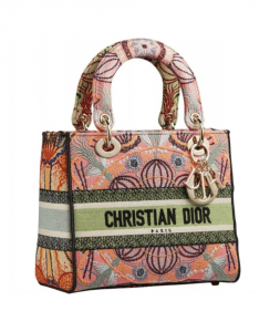 Dior D-Lite Patch Dior In Lights Embroidered - Cruise 2021