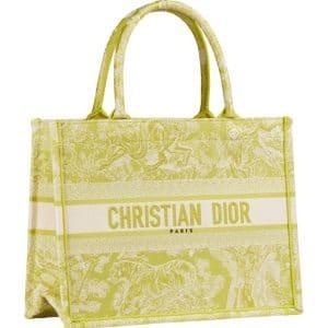 Dior Toile de Jouy Yellow Print Bag -Prefall 2021